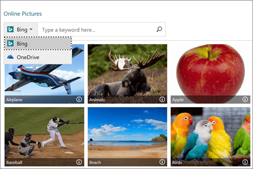 Screenshot of the Insert Pictures window for online pictures.