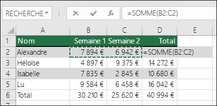La cellule D2 affiche la formule SOMME via la fonctionnalité Somme automatique: =SOMME(B2:C2)