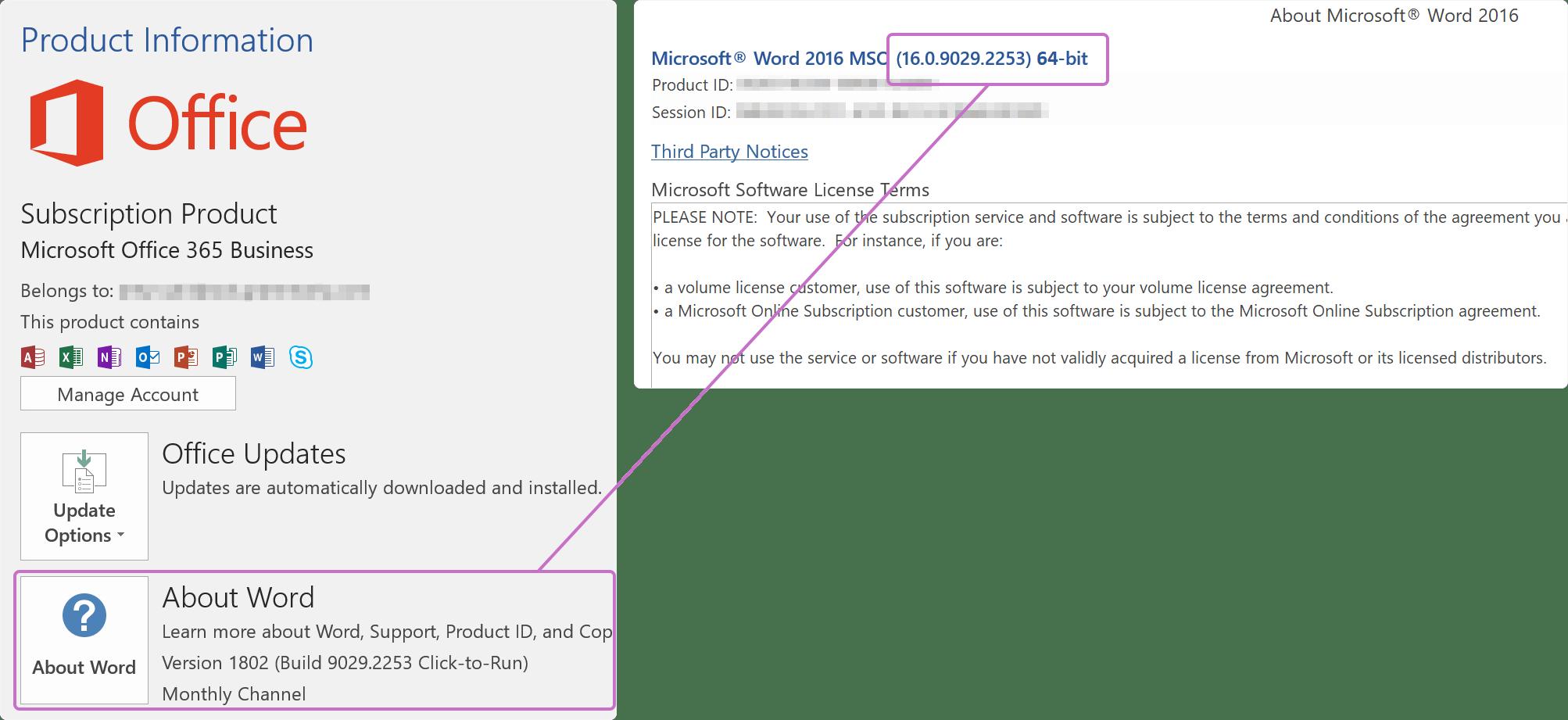 Microsoft Word Setup Free Download For Windows 7
