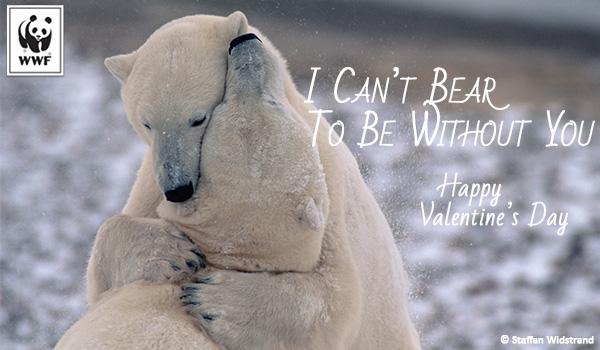Valentine WWF Free Ecards World Wildlife Fund