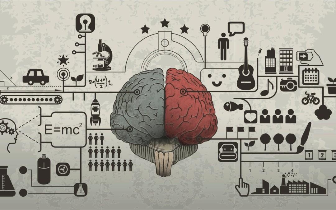 Left side brain, right side brain