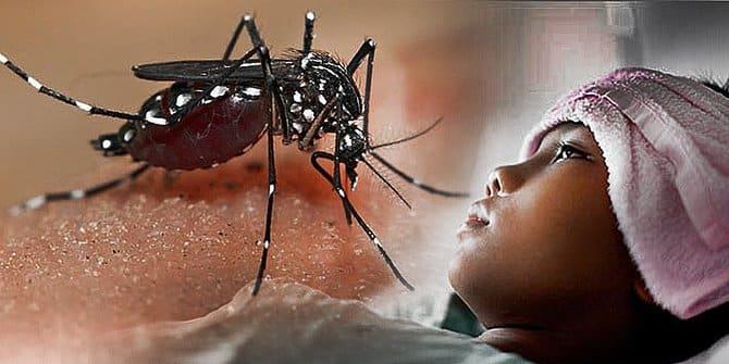 Waspada DBD Saat Pandemi