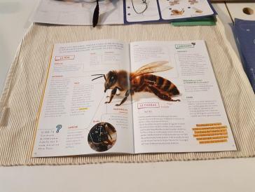 abeilles - kit pandacraft