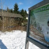 The Interpreter (Signs Around Town): Secrets of Arn Canal