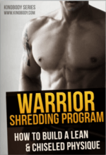 warrior shredding program pdf