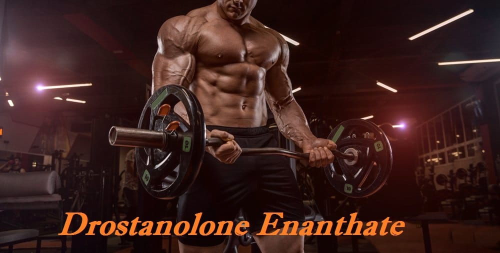 drostanolone-enanthate-review