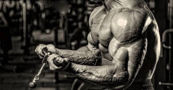 amazing-arms-bodybuilder