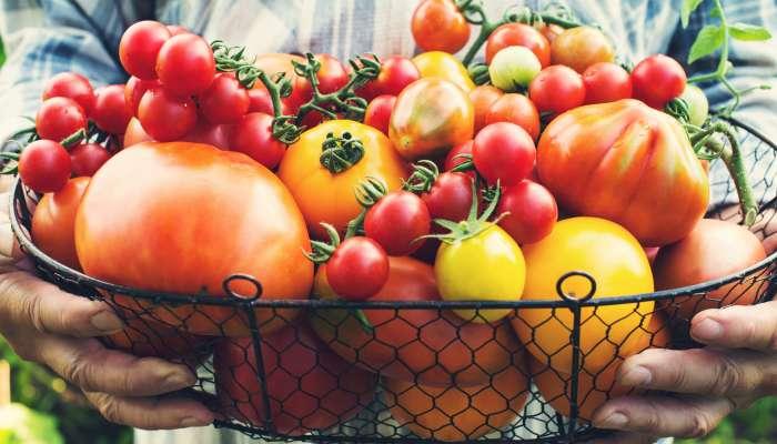 Alimentos orgânicos não são bons apenas para o corpo, mas também para a mente e a alma 1