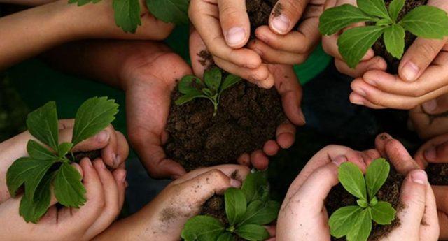 Especial Plastivida de Sustentabilidade será destaque na Plástico Brasil 2019