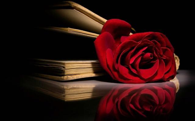 O Nome da Rosa: Enredo e Significado da obra de Umberto Eco – Luigi Angelino