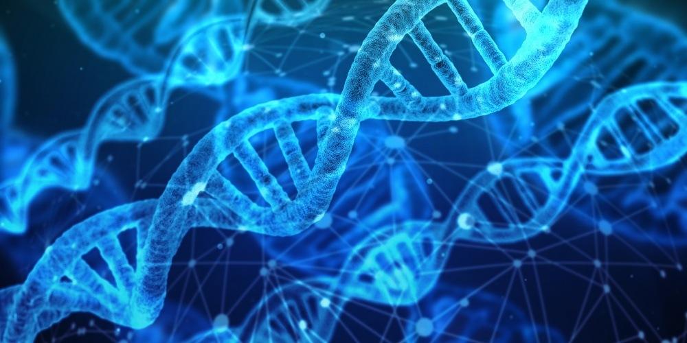 Biologia sintética