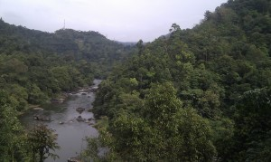 The Kelani River