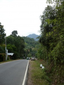 Hills getting higher and higher as the Tuk Tuk takes me further into the Jungle