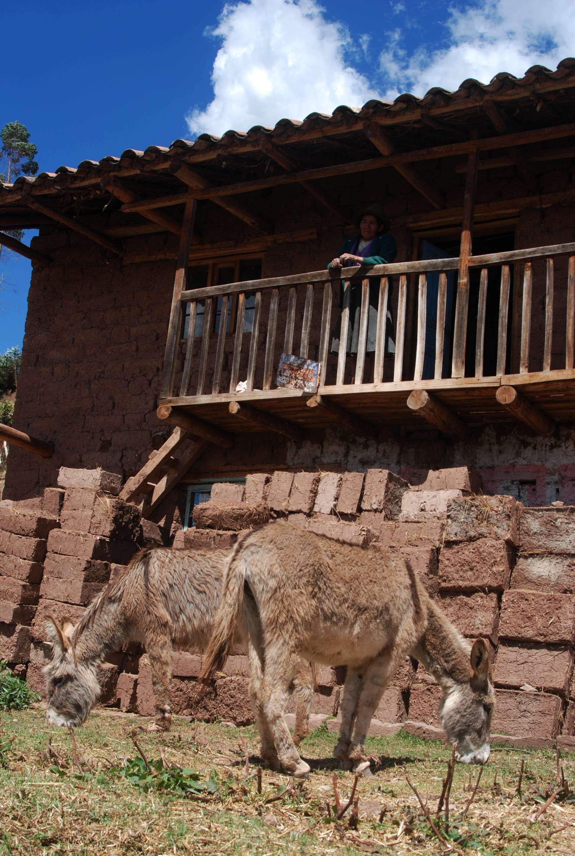 Casas de tierra y burros