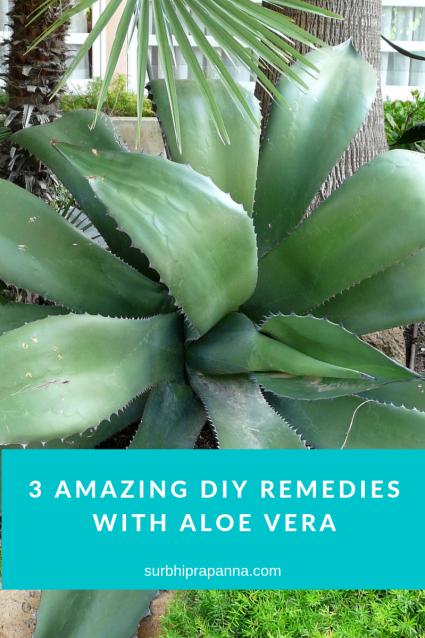 3 Amazing DIY Remedies with Aloe Vera