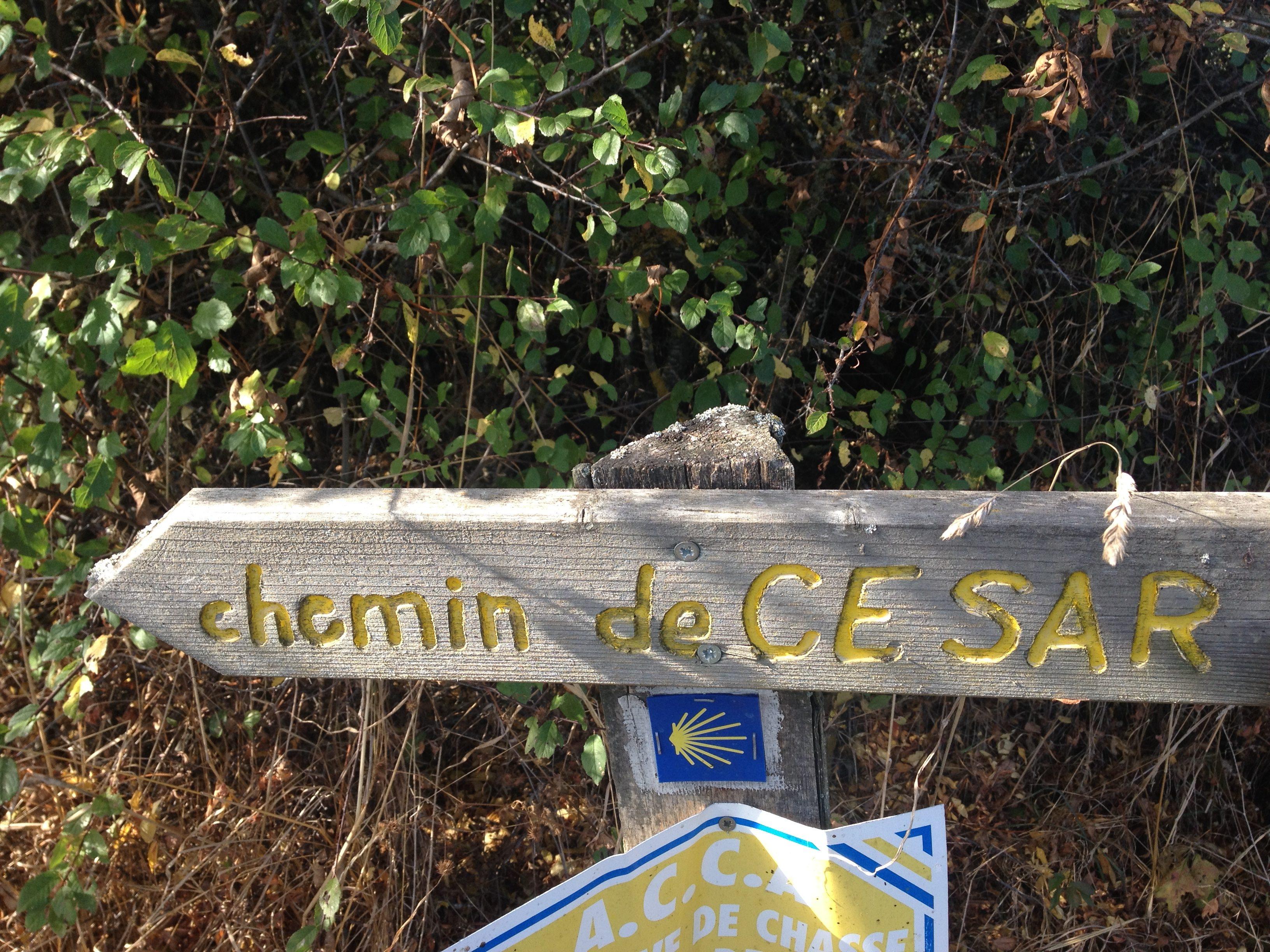 Chemin Cesar