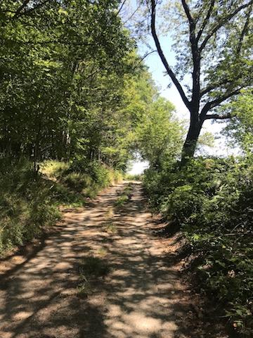 chemin vers Martigny