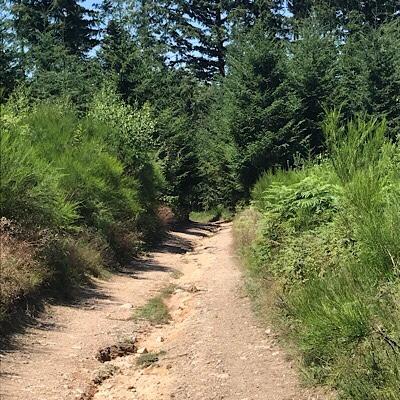 Propières – Le Cergne: 20km