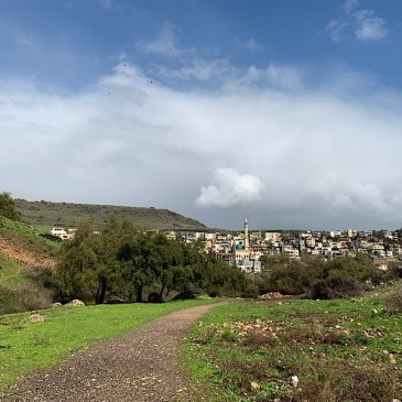 4- Moshav Arbel to Tabgha