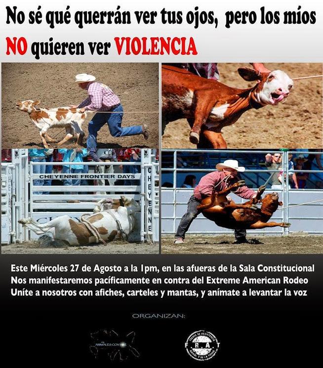No violencia contra los animales