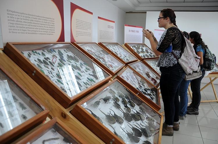 Colores, curiosidad y conocimiento se conjugan en la Expo UCR24