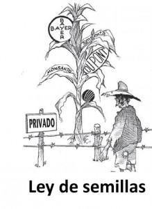 Gobierno convoca proyecto a la medida de las transnacionales semilleras