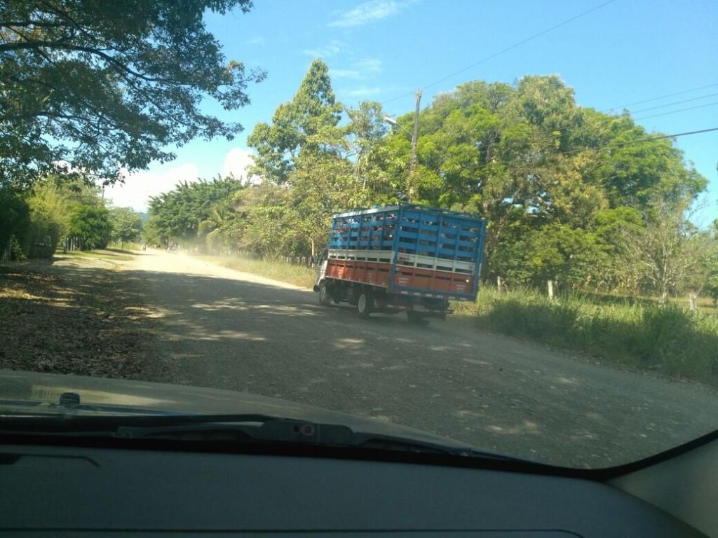 Invasion Parque nacional Corcovado2