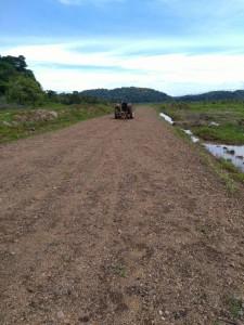 Narcopista Terraba-Sierpe a la par de Laguna de Sierpe Informante Anonimo (3)