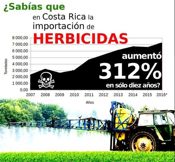 Santo Domingo de Heredia no mas herbicidas