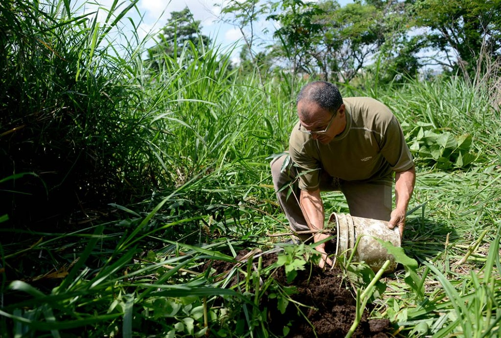 Costa Rica busca liderazgo en uso de isotopos4