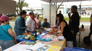 UCR Encuentro y VII Feria buscan consolidar economia social solidaria