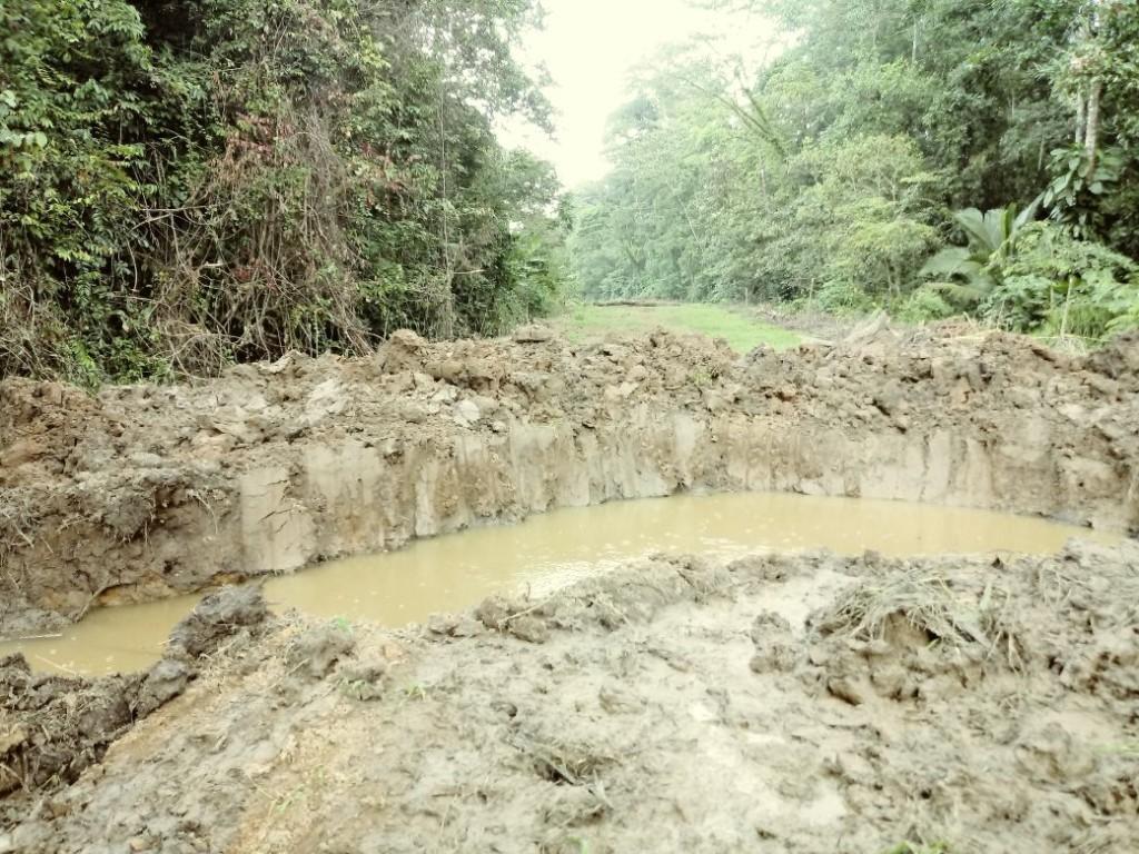 No a la destruccion del parque nacional Tortuguero2