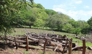 La defensa de los rios del pacifico central depende de las comunidades2