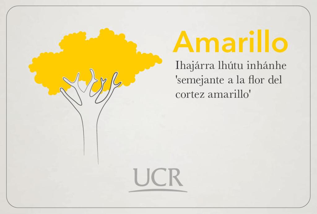UCR Expresion de colores utilizada por los malecus se rescata para fines culturales y educativos5