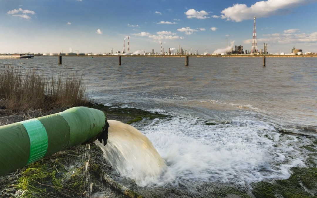 The Global Effects of Polluted Water