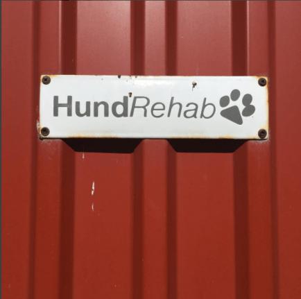 rehabhund