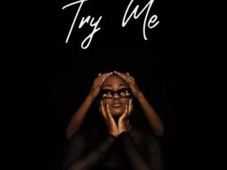 AUDIO + VIDEO: Tems – Try Me