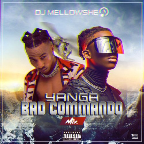 "DJ Mellowshe – ""Yanga Bad Commando Mix"""