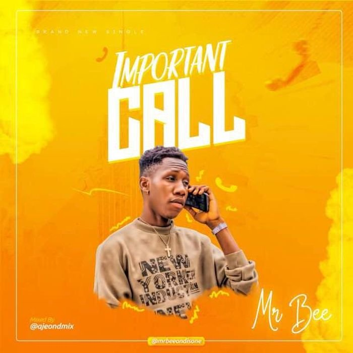 Mr Bee – Important Call
