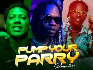 Abramsoul x Naira Marley x C Blvck - Pump Your Parry (Remix)