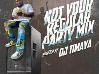 DJ Timaya – Not Your Regular Party Mixtape