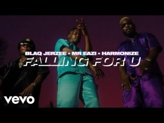 VIDEO: Blaq Jerzee, Mr Eazi, Harmonize - Falling For U