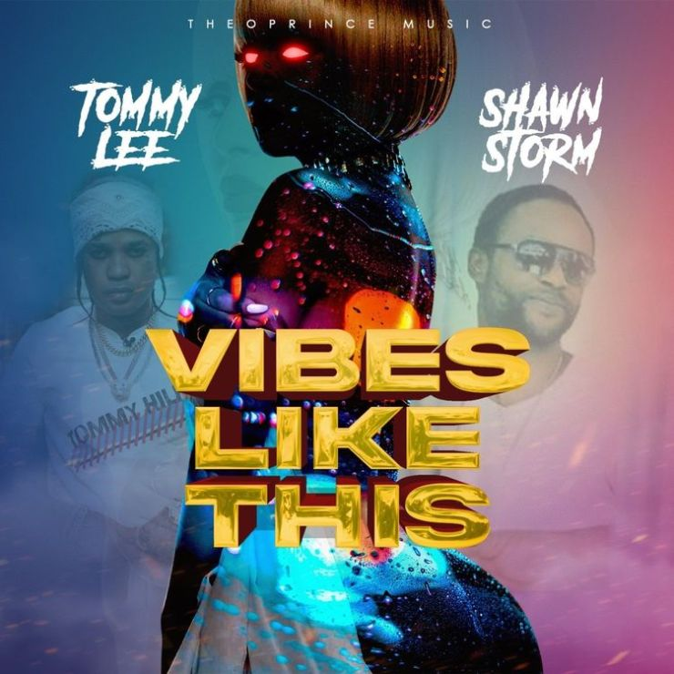 Tommy Lee Sparta Ft. Shawn Storm - Vibes Like This