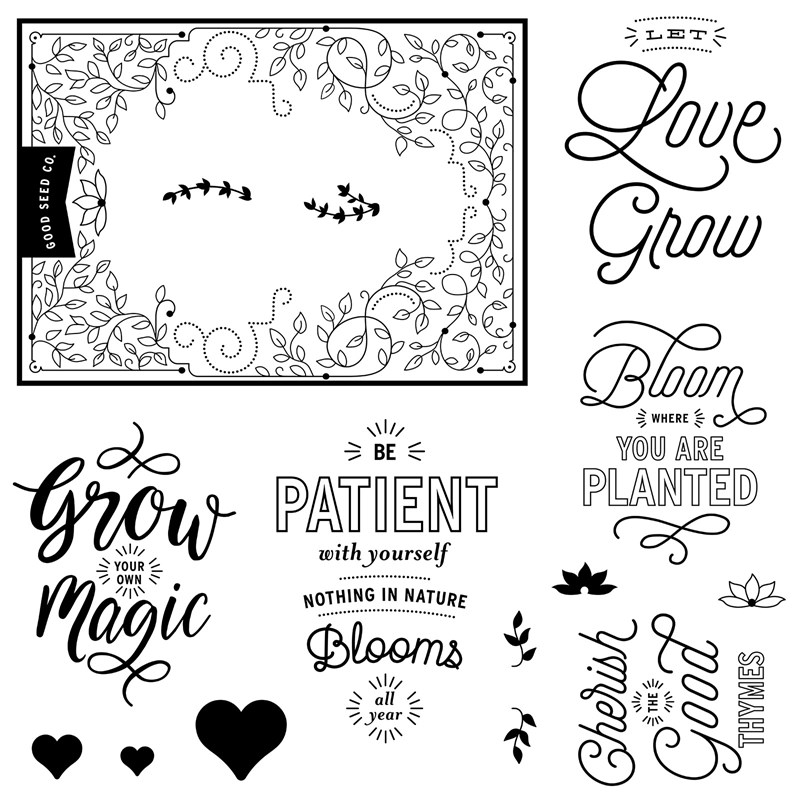 JANUARY STAMP OF THE MONTH - Bloom and Grow