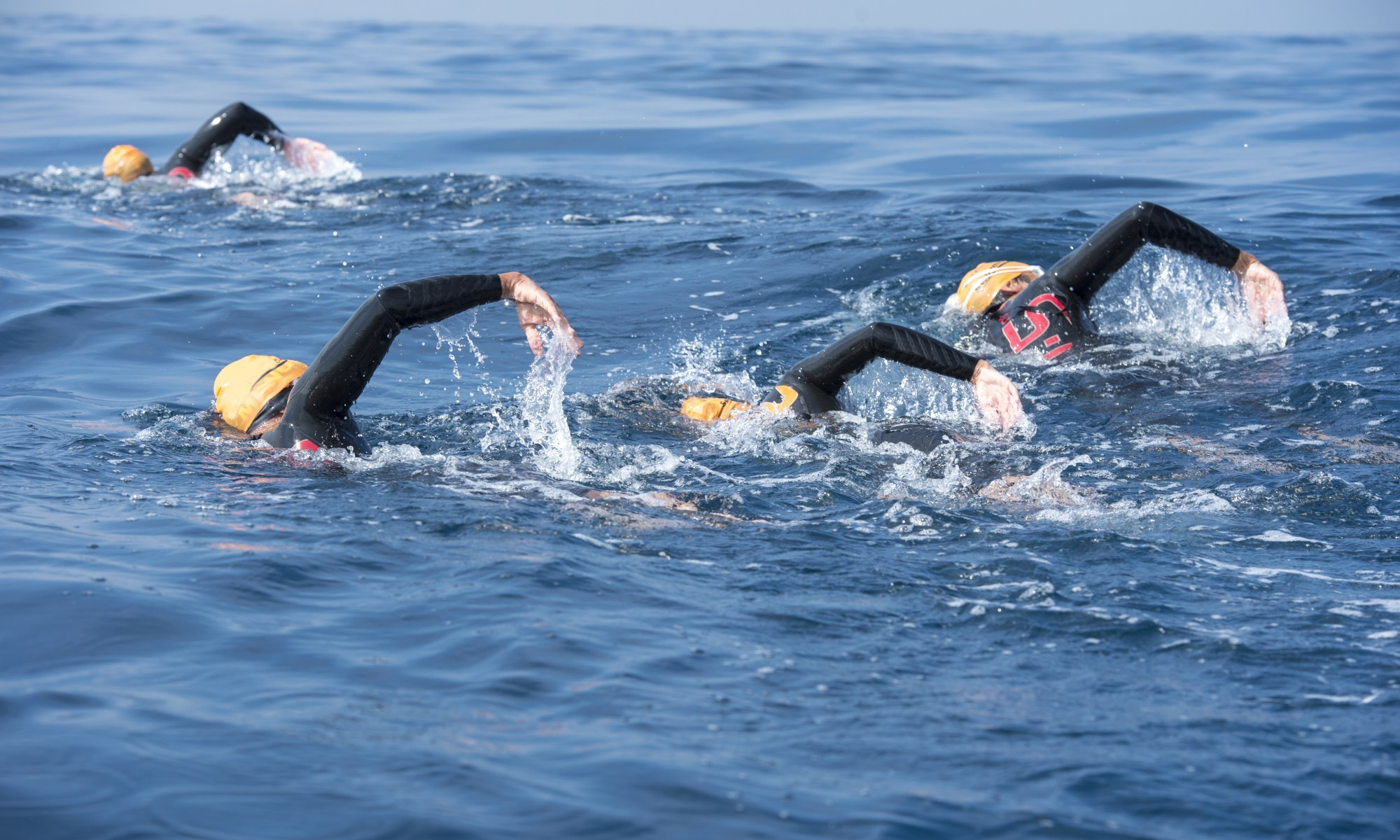 open water swimming North Devon