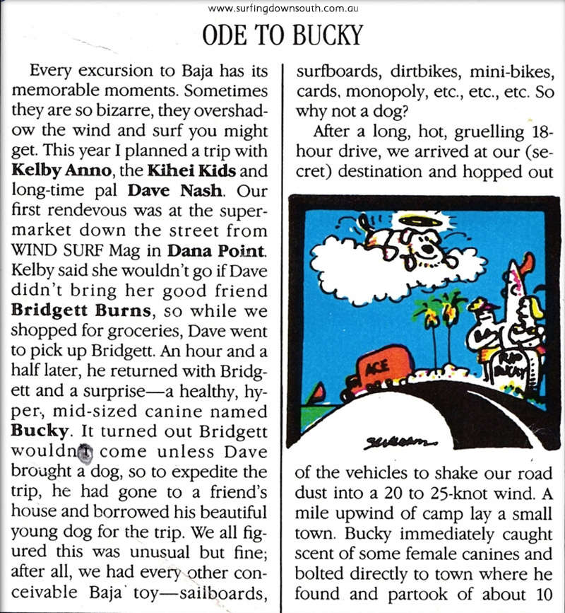1980s Ode to Bucky by Rich Myers 100