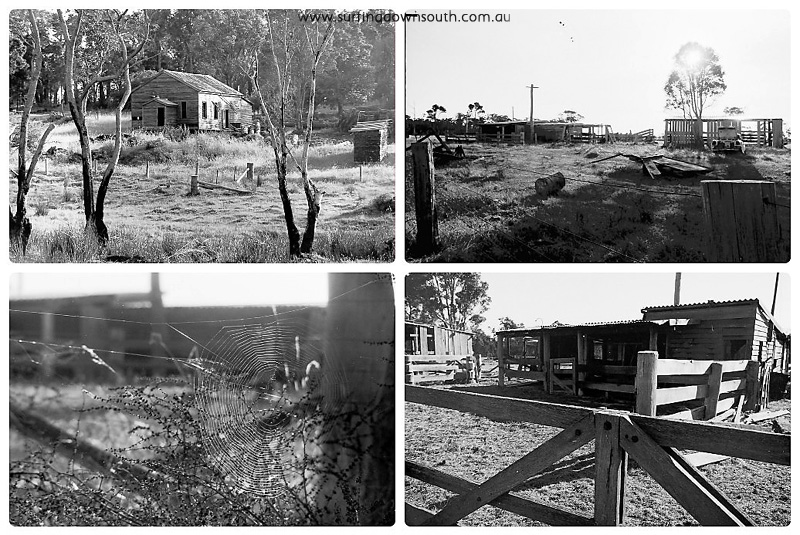1975-77 Old Farm houses 2 collage_photocat