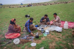 Living with the Qashqai Tribes