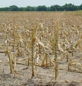agri_majorareas_dryland_problemsofcropproduction