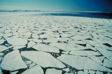 arctic_ice_flow